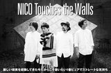 NICO Touches the Walls