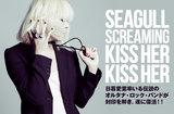 Seagull Screaming Kiss Her Kiss Her