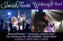SpecialThanks × The Winking Owl