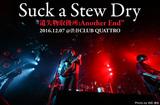 Suck a Stew Dry