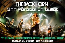 THE BACK HORN × 9mm Parabellum Bullet