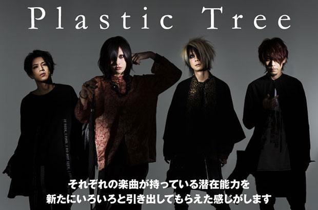 "Plastic Treeのインタビュー含む特集公開。ペリカン、ピープル、GOTRら相思相愛な12組参加+幻の楽曲収録、メジャー・デビュー20周年""樹念""豪華トリビュート盤を9/6リリース"