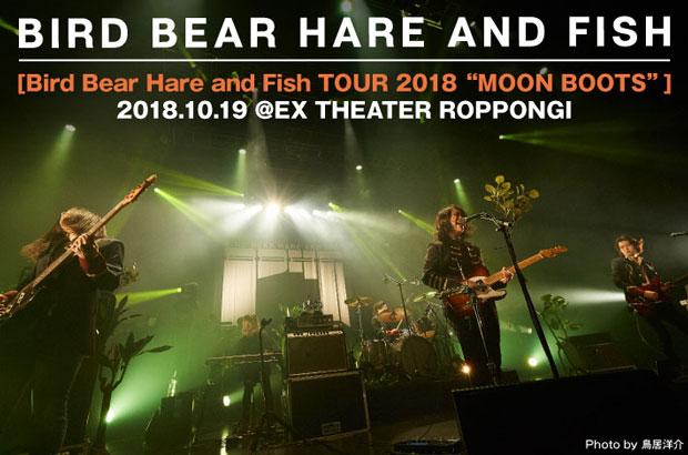 Bird Bear Hare and Fishのライヴ・レポート公開。初全国ツアー最終日、BBHFならではの表現力を発揮し、バンドの偉大な第一歩となったEXシアター六本木公演をレポート