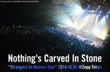 Nothing's Carved In Stoneのライヴ・レポートを公開。最新作を携えた全国ツアー終盤戦、怒涛の演奏で客席を沸かせ続けたソールド・アウトのZepp Tokyo公演をレポート