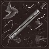 クラムボン、モーサム、KenKen(RIZE)、イエモン、ミッシェル、ザ・コレクターズ、Syrup 16gら全15組の楽曲を収録したオムニバス・アルバム『THE REVIVAL OF TRIAD [2015]』、3/18にリリース決定