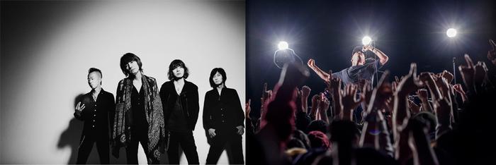 The Birthday × THA BLUE HERB、8/24に開催の恵比寿LIQUIDROOM12周年記念公演に出演決定