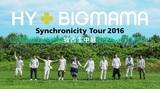 """HY+BIGMAMA、10/1に開催する""""Synchronicity Tour 2016""""ファイナル沖縄公演の模様がAbemaTVにて独占生中継決定"""