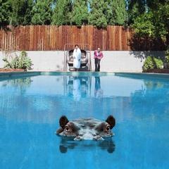 Sparks/Hippopotamus (jake-sha).jpg