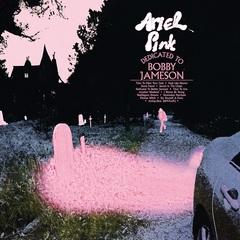 Ariel Pink_sleeve.jpg