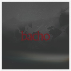 bacho_EZCT-72.jpg