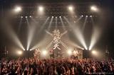 """怒髪天、来年1月に新春公演""""トーキョー・ブラッサム""""2デイズで開催決定"""