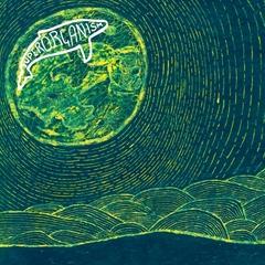 superorganism_album_3000.jpg