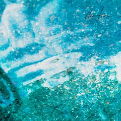 thefin_snow.jpg