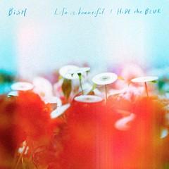 bish_lib_hyou1_cddvd.jpg