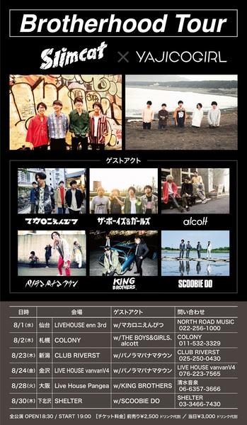 slim_yajico.jpg
