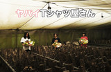 ヤバイTシャツ屋さん、2019年のツアー開催決定。9/19リリースのニュー・シングル『とってもうれしいたけ』にてCD封入最速先行実施も