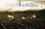 """ヤバイTシャツ屋さん、10月開催の""""とってもうれしいたけ""""ツアー第1弾対バンに打首、パノパナ、ARKS、MOSHIMO決定"""