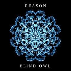blind owl_jkt.jpg