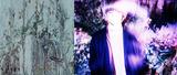 "österreich、TVアニメ""東京喰種トーキョーグール:re""第2期EDテーマ「楽園の君」参加ミュージシャン発表、ヴォーカルに飯田瑞規(cinema staff)を起用。MV公開&先行配信スタートも"