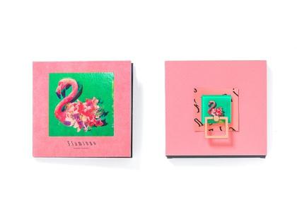 yonezu_Flamingo_packshot.jpg