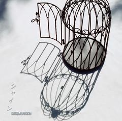 SaToMansion_single_jkt.jpg