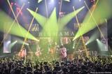"""BIGMAMA、メジャー1stアルバム『-11℃』の""""Complete Version""""を4/17リリース決定"""