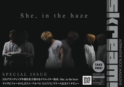 sheinthehaze_cover.jpg