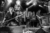 THE STRANGLERS、11月に27年ぶりとなる単独来日公演が決定