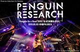 PENGUIN RESEARCHのライヴ・レポート公開。前のめりな演奏で満員の観客と真正面からぶつかり合った、ニュー・シングル『決闘』レコ発ツアー初日公演をレポート