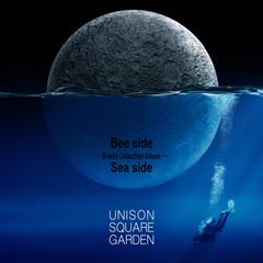 usg_b-sides_cd.jpg