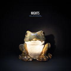 yajico_nights.jpeg