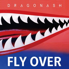 DA_Fly_Over.jpg