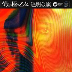 gesu_tomeinaarashi_jkt.jpg