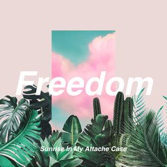 simac_freedom.jpg