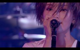 山本彩、10/16リリースのライヴBlu-ray&DVD『山本彩 LIVE TOUR 2019 〜I'm ready〜』から山本彩が作詞作曲の「Are you ready?」ライヴ映像公開
