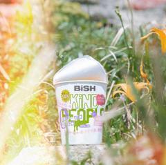 bish_rhythm_mv_d.jpg
