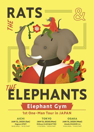 elephants_tour.jpeg