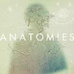 haloat4johan_anatomies.jpg