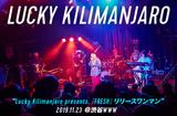 Lucky Kilimanjaroのライヴ・レポート公開。ソールド・アウトの初ワンマン、ハッピーなヴァイブスを会場全体に行き届かせ、来年への期待高めた渋谷WWW公演をレポート