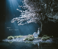 Aimer_SECL-2557_tsujoweb.jpg