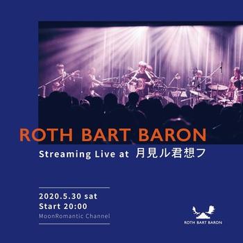 roth_bart_baron_20200530.jpg