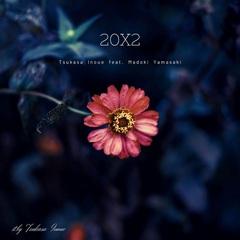 20X2.jpg