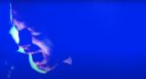 RADIOHEAD、2008年にさいたまスーパーアリーナで行った来日公演のライヴ映像公開