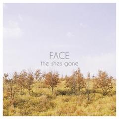 the_shes_gone_FACE_jk.jpg