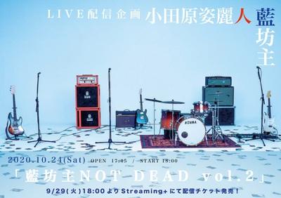 aobozu_streaming_live.jpg