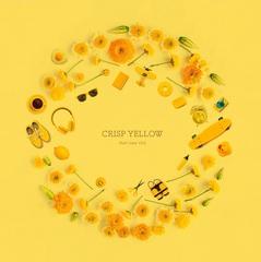 hto_crisp_yellow_shokai.jpg