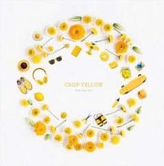 hto_crisp_yellow_tsujo.jpg