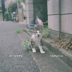 zookaraderu_tapioka.jpg