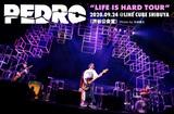 """PEDROのライヴ・レポート公開。ツアーで吸収したことを出し尽くすかのような最終公演、目を見張る""""PEDROのバンド感""""で魅せたLINE CUBE SHIBUYAワンマンをレポート"""
