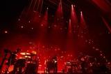"indigo la End、ニュー・アルバム『夜行秘密』リリース日が来年2/17に決定。新アー写&ツアー""indigo la End ONEMAN TOUR 2020-2021「夜警」""追加日程も発表"